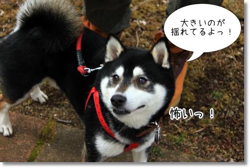 14_20120401025205.jpg