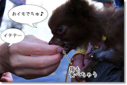 15_20120322020953.jpg