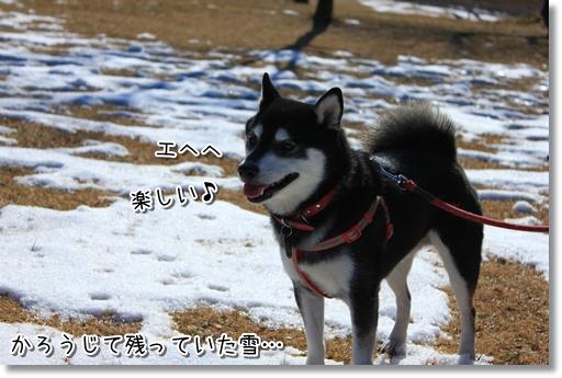 17_20120207035719.jpg