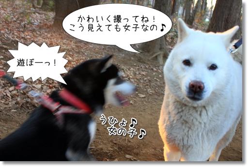 18_20120221180610.jpg