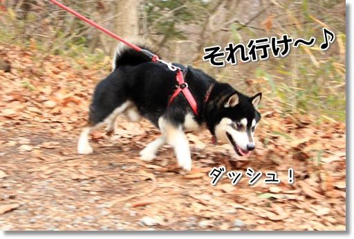 19_20120314035103.jpg