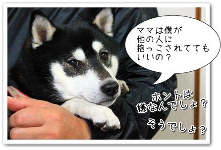 1_20120126013705.jpg