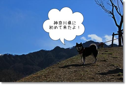 1_20120328012044.jpg