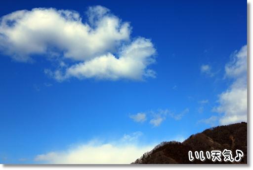 1_20120331020127.jpg