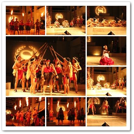 トロピカルダンスショー