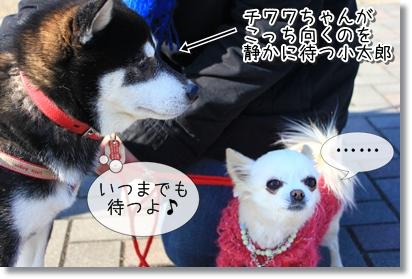2_20120119005533.jpg