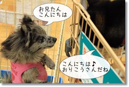 2_20120122015830.jpg