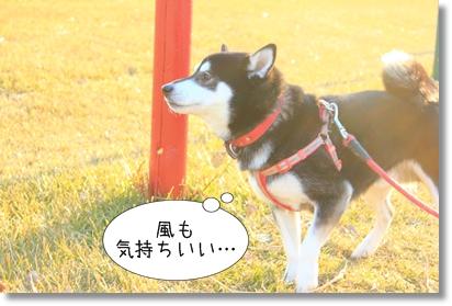 2_20120130163202.jpg