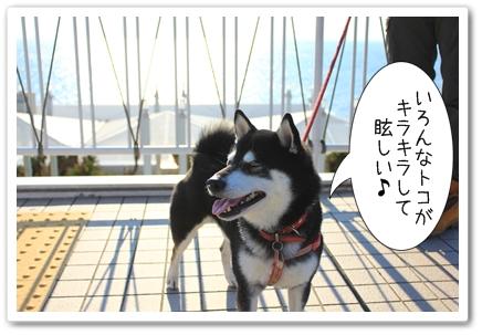 2_20120131132415.jpg