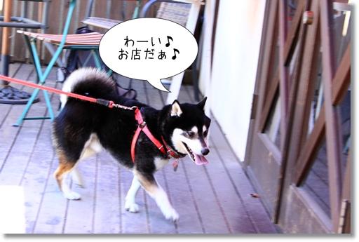 2_20120322013746.jpg