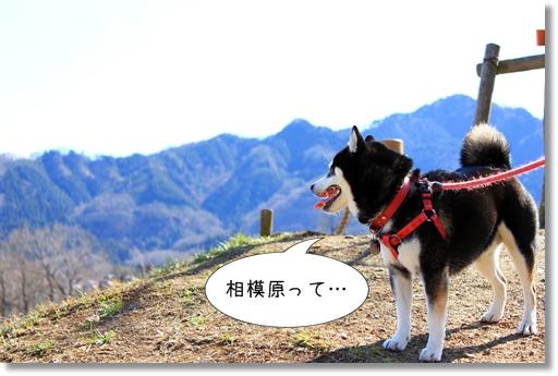 2_20120328012044.jpg