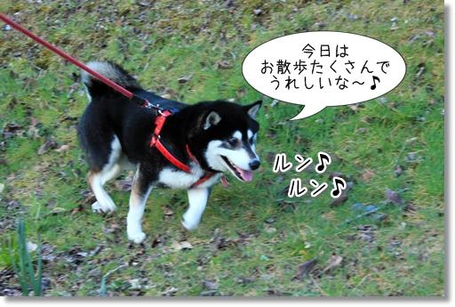 2_20120330082757.jpg