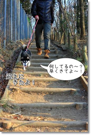 3_20120221173355.jpg