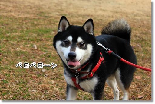 3_20120307010317.jpg