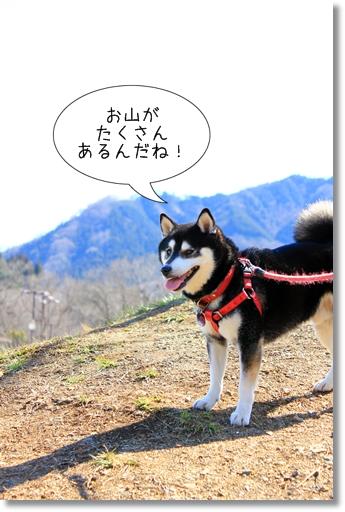 3_20120328012044.jpg