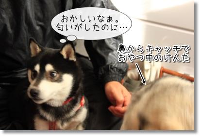 4_20120120022445.jpg