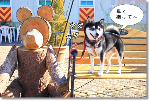 4_20120207031317.jpg