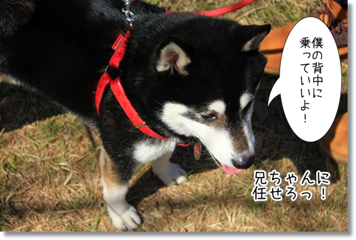 4_20120324015429.jpg