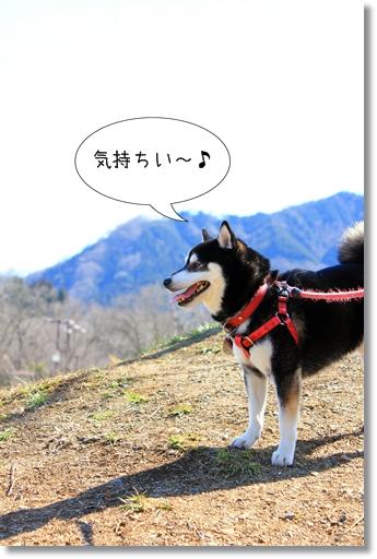 4_20120328013126.jpg