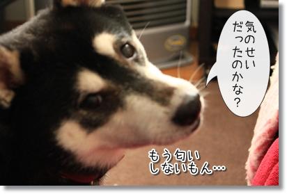 5_20120120022445.jpg