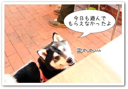 6_20120129123324.jpg