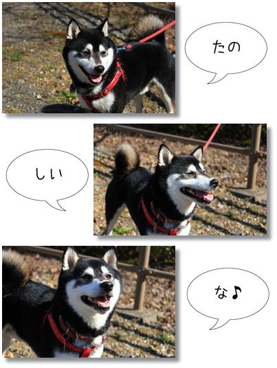 6_20120328012043.jpg
