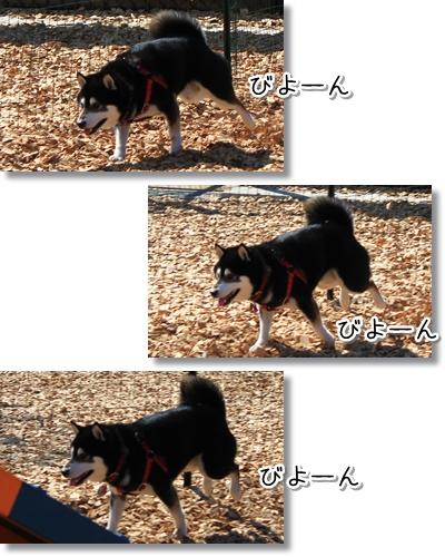 6_20120331020126.jpg