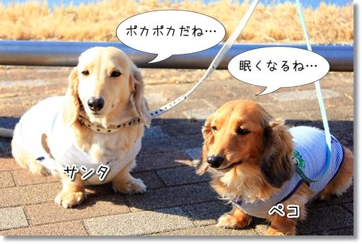 7_20120301023841.jpg