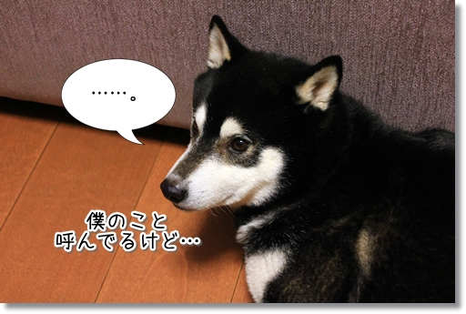 7_20120404001739.jpg