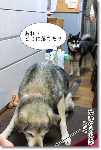 8_20120306035507.jpg