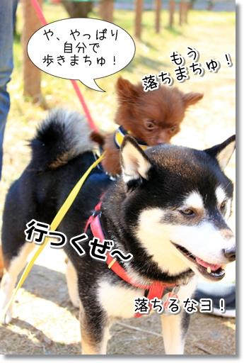 9_20120324015945.jpg
