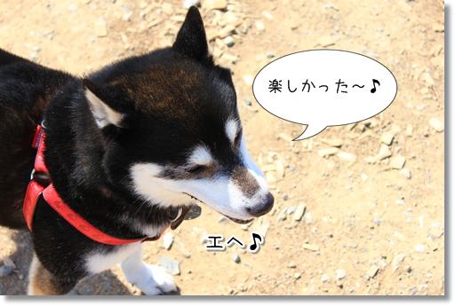 9_20120331022314.jpg