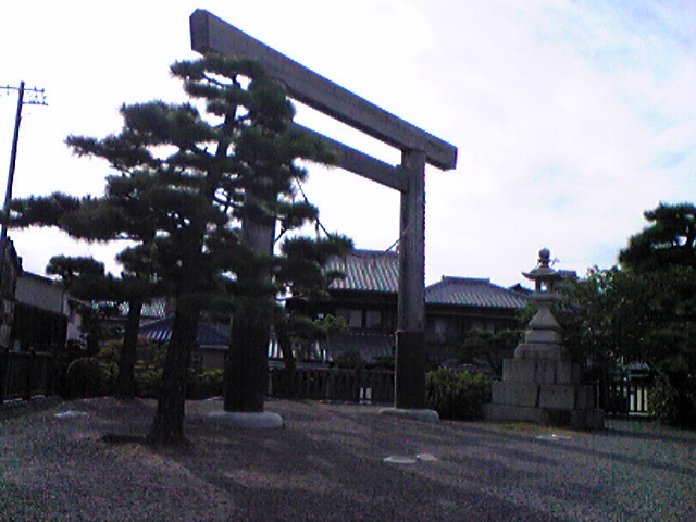 Image440.jpg