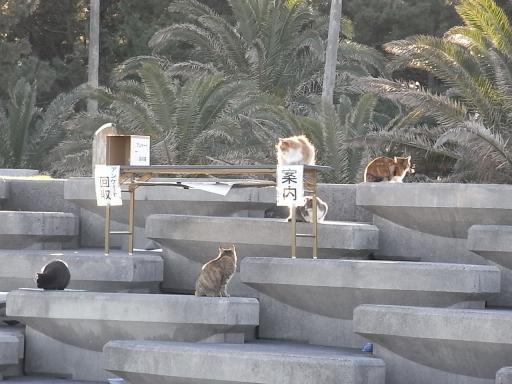 見学会in静岡2