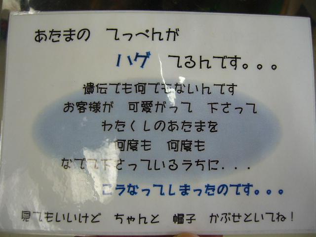 P1130359.JPG