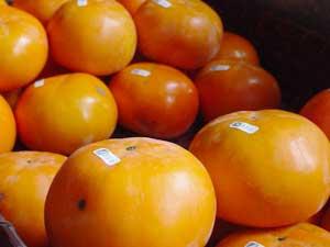 野菜マルシェ柿