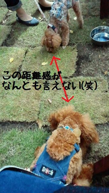 20111108140800001.jpg