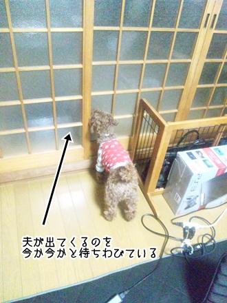 001_20120223225144.jpg