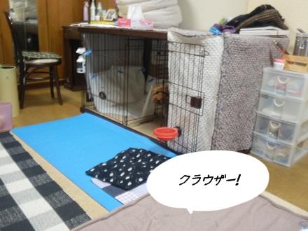 002_20111121233916.jpg