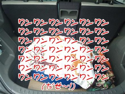 002_20120110234528.jpg