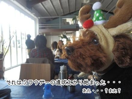 005_20111205002727.jpg
