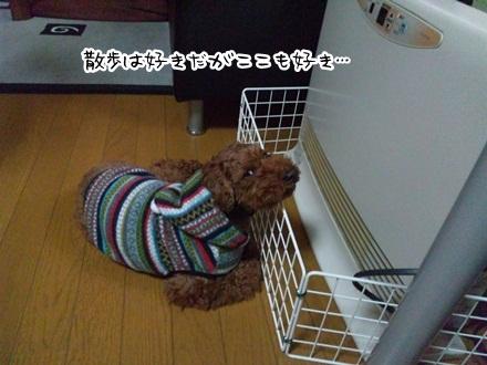 006_20111221171859.jpg