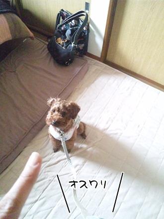 006_20120308223040.jpg