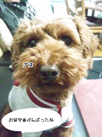 009_20120121225144.jpg