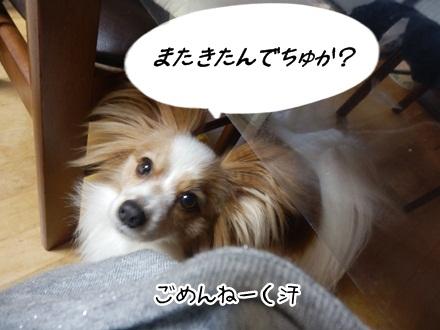 009_20120424111944.jpg