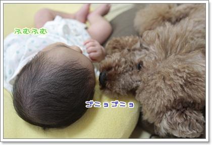 1_20110923100254.jpg