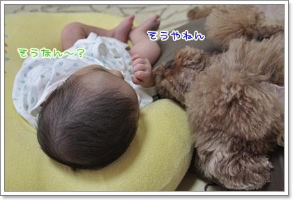 2_20110923100253.jpg