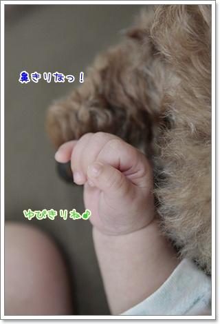 3_20110923100253.jpg