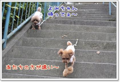 5_20110826204205.jpg