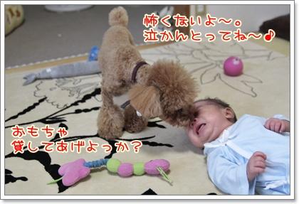 8_20110828175808.jpg